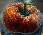 Floating Tomato, Gary Ibsen