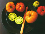 Tomatoes On Plate, Kip Stewart