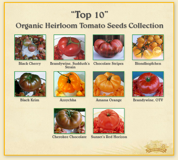 Top 10 Favorite Heirloom Tomatoes for 2015